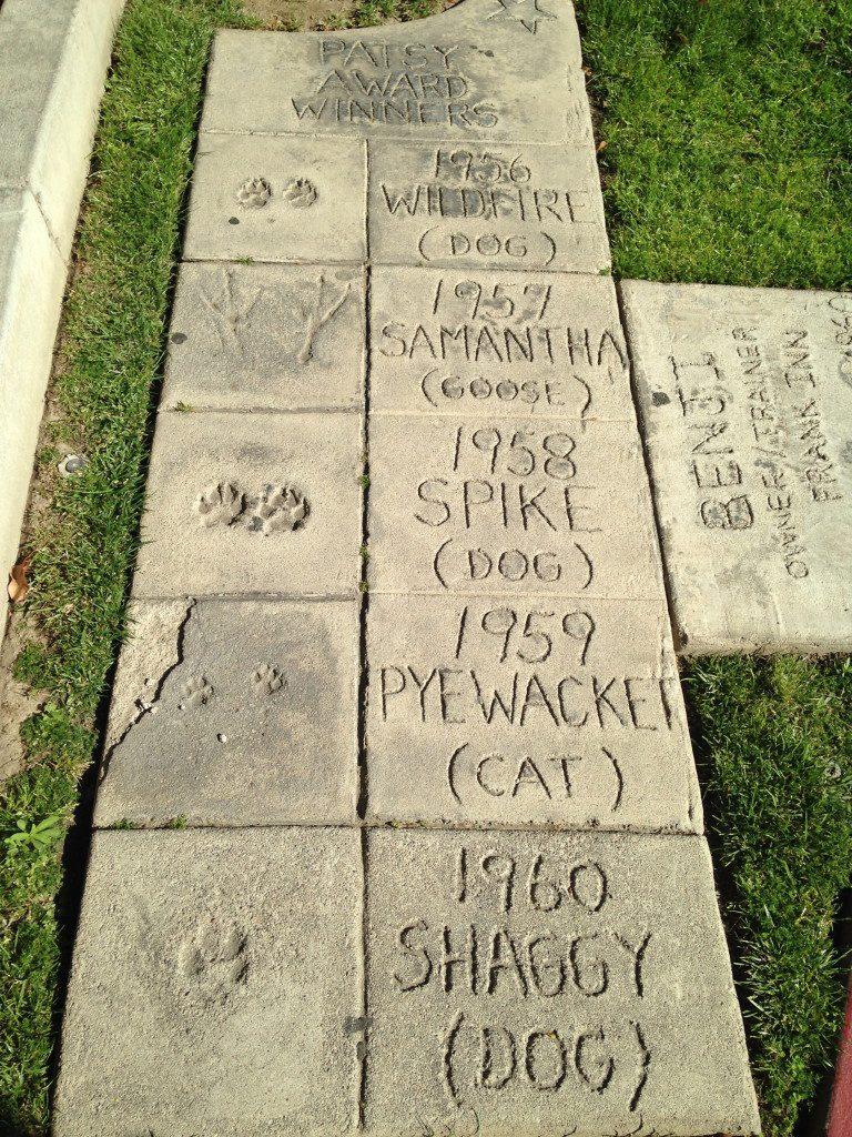 Animal Walk of Fame